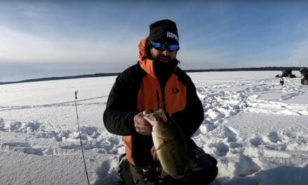 Brainerd Lakes Area Buzz Bite Report 1-12-13