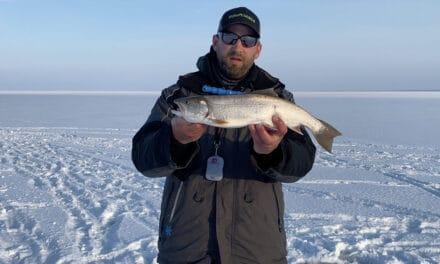 Lake Superior/ Wisconsin Buzz Bite Report: 1-5-2021