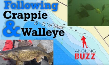 Following Spring Walleye and Crappie