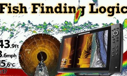 Finding Fish Logic